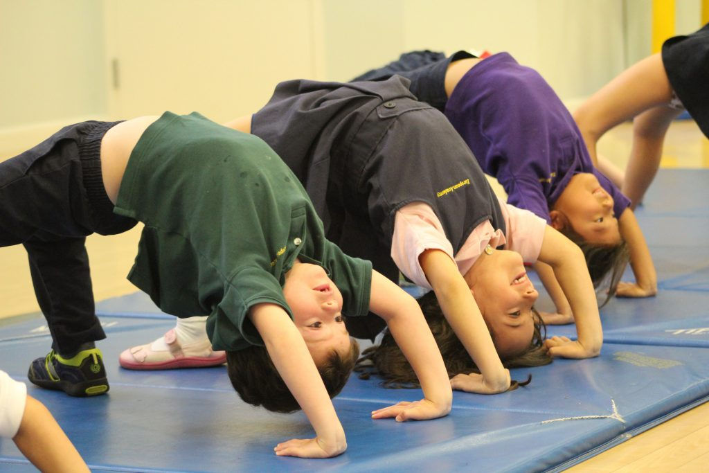 EEAE students participating in PE image